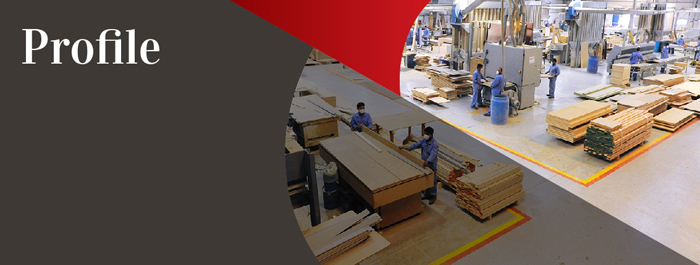 Vision Furniture And Decoration Factory, Established In The Year 2003 And  Head Quartered In Abu Dhabi, Provides Full Woodworking Solutions For  Upholstery, ...